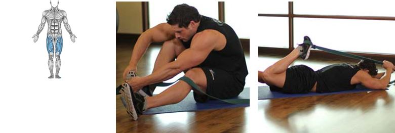 Hip Flexor Quad Stretch